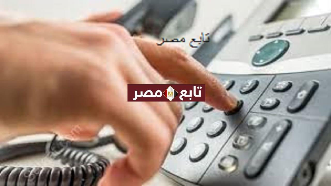دفع فاتورة التليفون الارضي لشهر يوليو 2021 وفاتورة النت