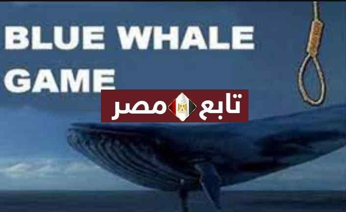 هيئة الاتصالات الأردنية تعلن حظر لعبة الحوت الأزرق